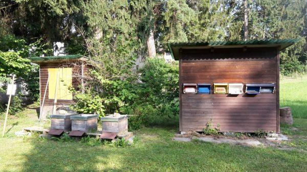 Bienenhaus 1989-2018